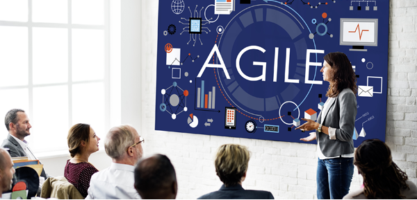 Building an Agile Team